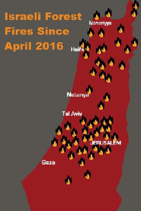 Israel's Forest Fires Since April 2016